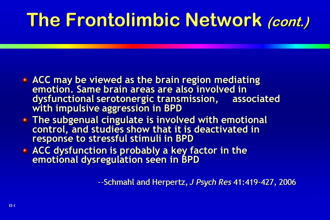 13 EI-I The Frontolimbic Network (cont.) ACC may be viewed as the brain region mediating emotion. Same brain areas are also involved in dysfunctional