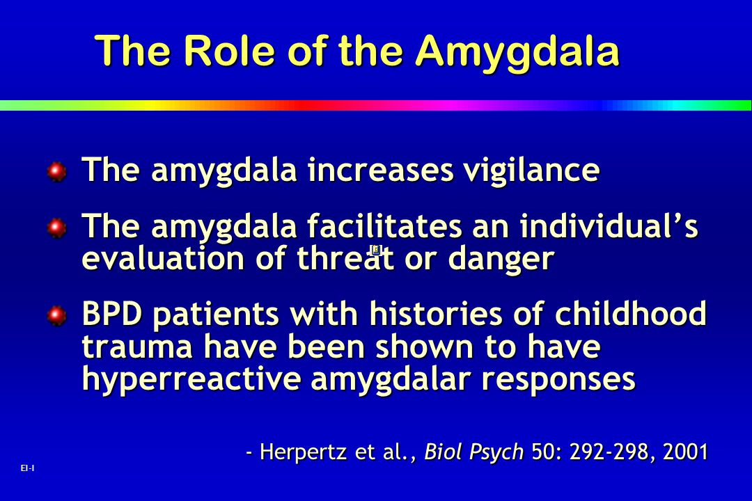 2 EI-I The Role of the Amygdala The amygdala increases vigilance The amygdala facilitates an individuals evaluation of threat or danger BPD patients w