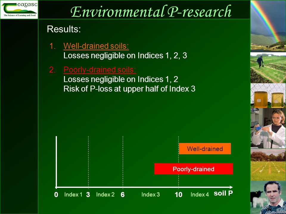 Environmental P-research Results: 1.Well-drained soils: Losses negligible on Indices 1, 2, 3 2.Poorly-drained soils: Losses negligible on Indices 1, 2 Risk of P-loss at upper half of Index 3 03610 Index 4Index 1Index 2Index 3 soil P Well-drained Poorly-drained Well-drained