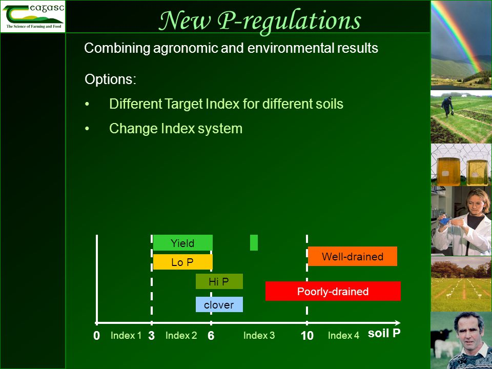 New P-regulations Combining agronomic and environmental results 03610 Index 4Index 1Index 2Index 3 soil P Well-drained Poorly-drained Well-drained Yield Lo P Hi P clover Options: Different Target Index for different soils Change Index system
