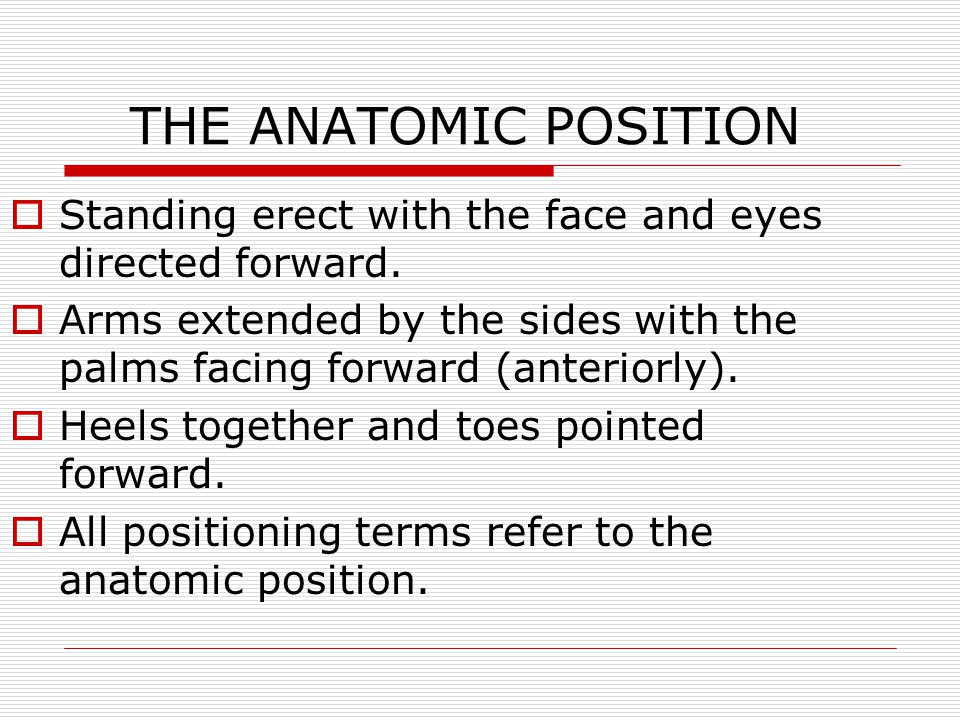 AP (ANTEROPOSTERIOR) PROJECTION CR enters the anterior body surface and exits the posterior body surface.