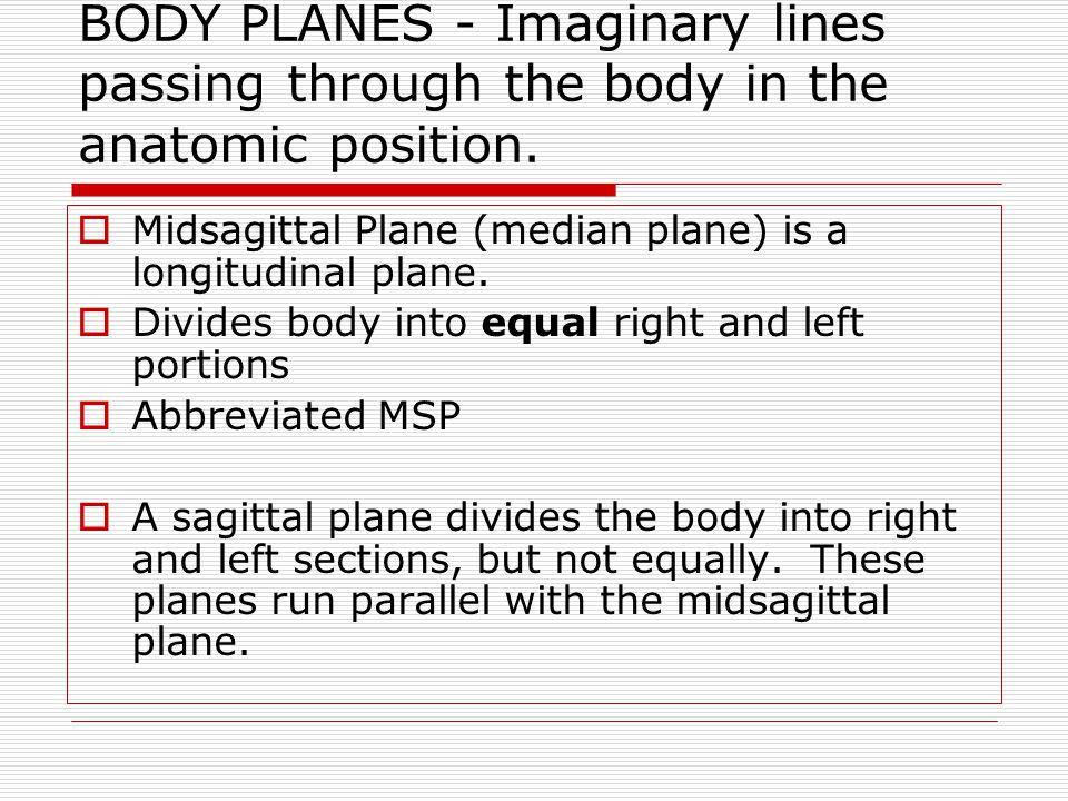 BODY PLANES Midcoronal plane is a longitudinal plane.