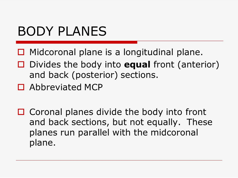 BODY PLANES Horizontal, Transverse, or Axial Planes Any transverse plane dividing the body into upper (superior) and lower (inferior) sections.