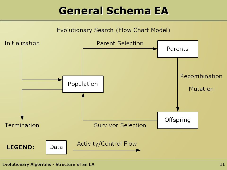 Evolutionary Algoritms - Structure of an EA10 EA Components Representation mechanism (definition of individuals) Evaluation function (or fitness function) Population as container data structure Parent/Survivor selection mechanism Variation operators (Recombination, Mutation) Initialization procedure / Termination condition