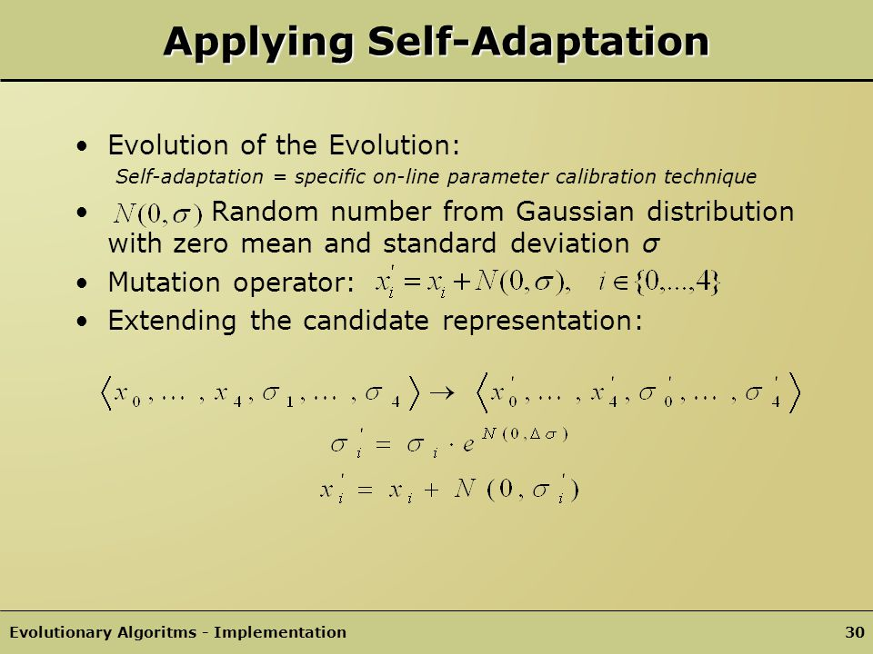 Evolutionary Algoritms - Implementation29 Search Space: Evolutionary strategy: Solution candidate (no encoding necessary): Fitness-Function : Parent selection: Elitist Recombination: 1-Point, fixed Non-overlapping population Another Simple Example Hybrid approach: evolutionary strategy and genetic program