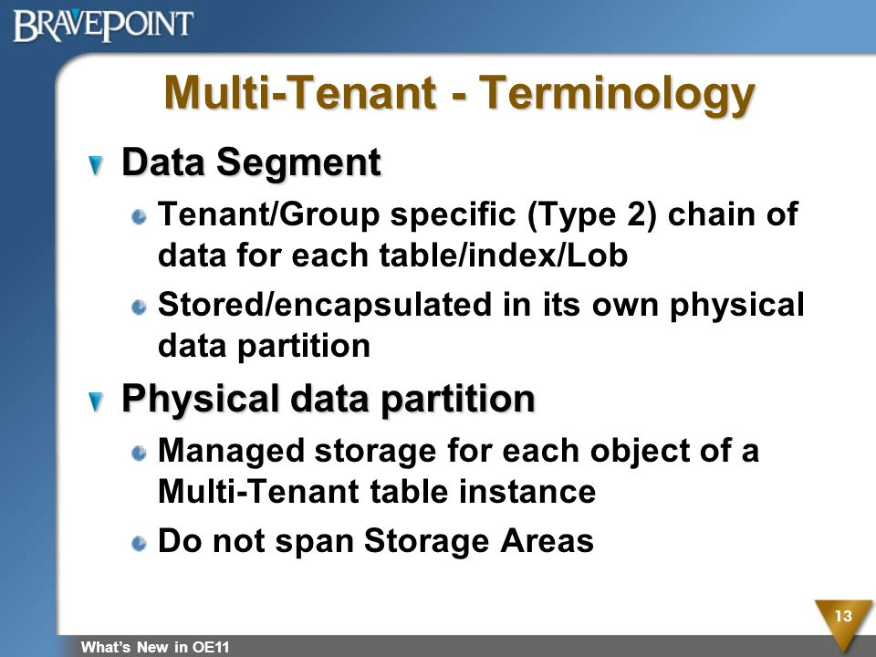 Multi-Tenant - Terminology Data Segment Tenant/Group specific (Type 2) chain of data for each table/index/Lob Stored/encapsulated in its own physical