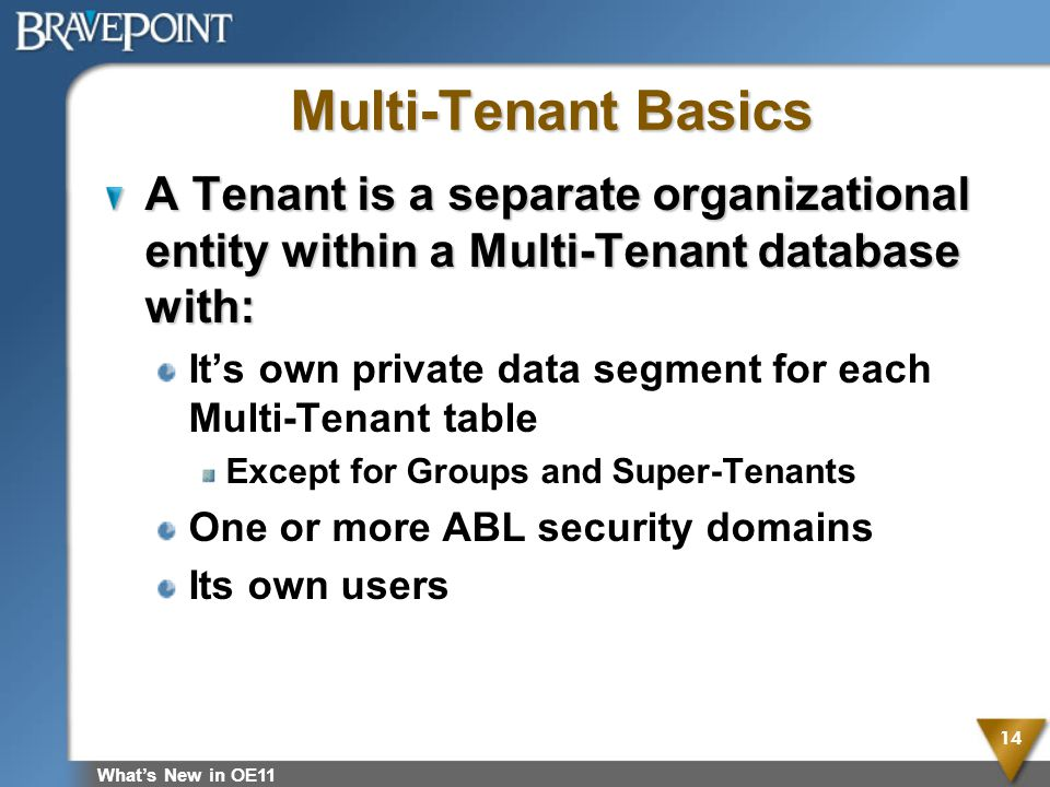 Multi-Tenant Basics A Tenant is a separate organizational entity within a Multi-Tenant database with: Its own private data segment for each Multi-Tena
