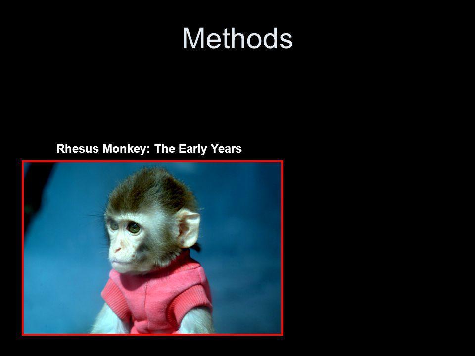 Methods - Stimulus
