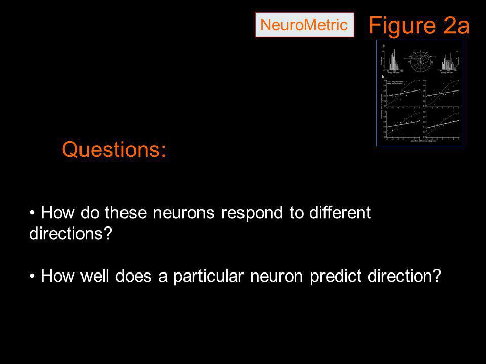 Figure 2a NeuroMetric Questions: How do these neurons respond to different directions? How well does a particular neuron predict direction?