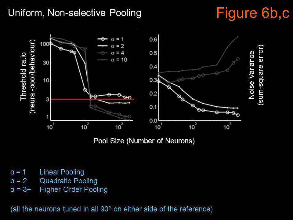Figure 6b,c α = 1 Linear Pooling α = 2 Quadratic Pooling α = 3+ Higher Order Pooling Noise Variance (sum-square error) Threshold ratio (neural-pool/behaviour) Uniform, Non-selective Pooling (all the neurons tuned in all 90° on either side of the reference) Pool Size (Number of Neurons)