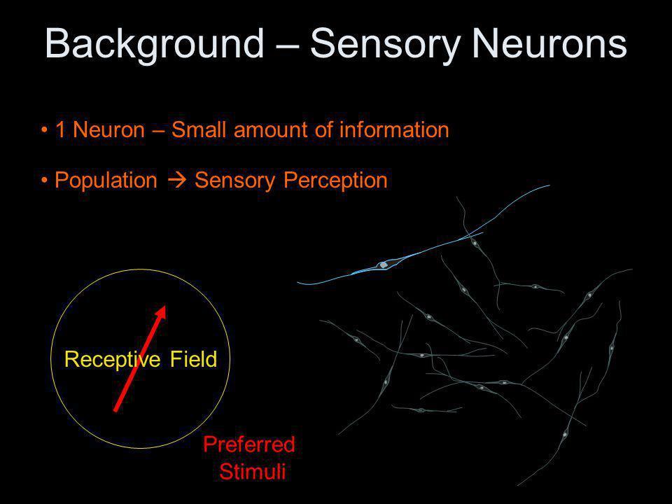 Stimulus Perception Population-coding Scheme All active neurons contribute to perception.