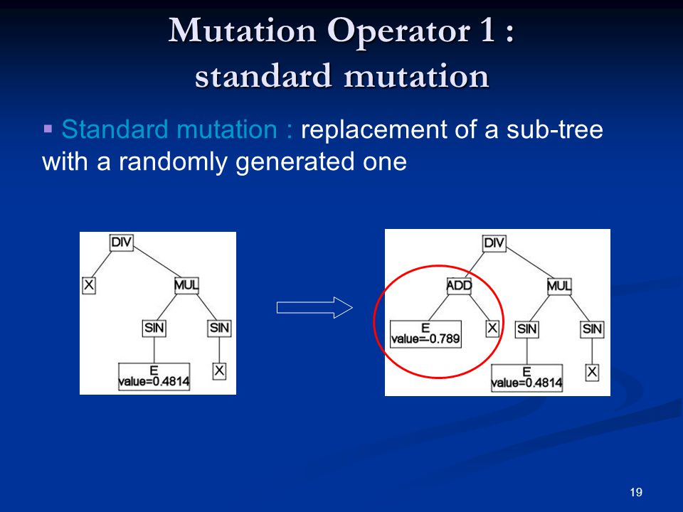 19 Mutation Operator 1 : standard mutation Standard mutation : replacement of a sub-tree with a randomly generated one