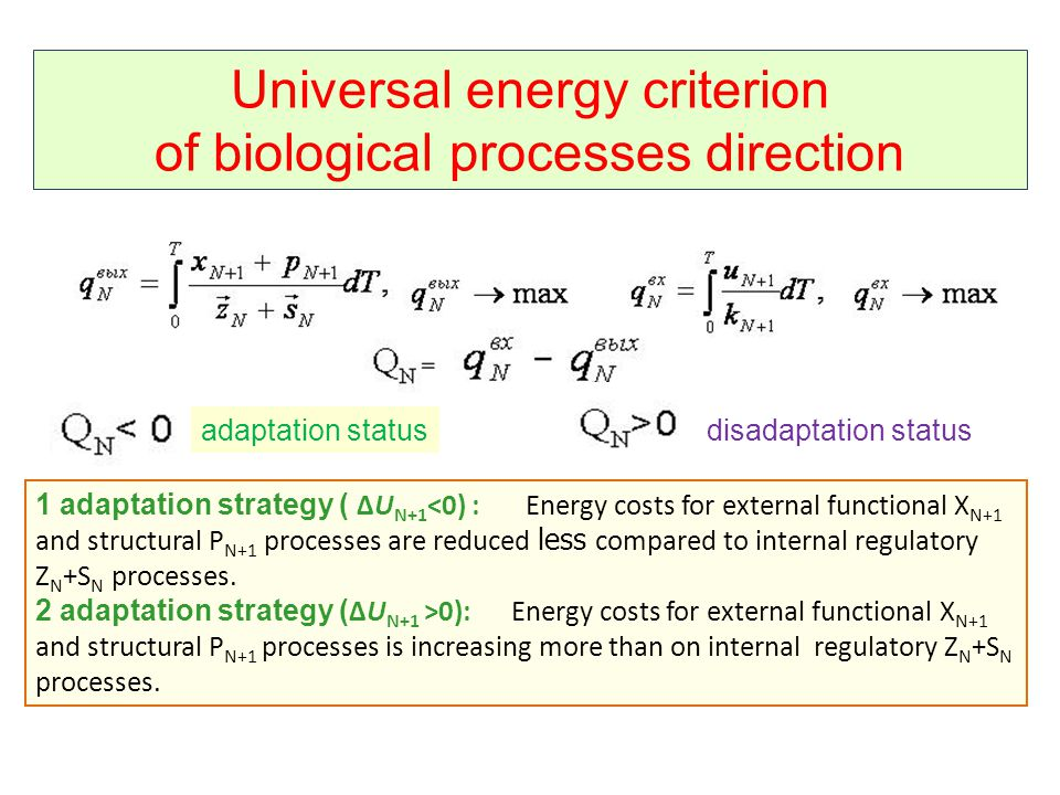 Universal energy criterion of biological processes direction adaptation statusdisadaptation status 1 adaptation strategy ( ΔU N+1 <0) : Energy costs for external functional X N+1 and structural P N+1 processes are reduced less compared to internal regulatory Z N +S N processes.
