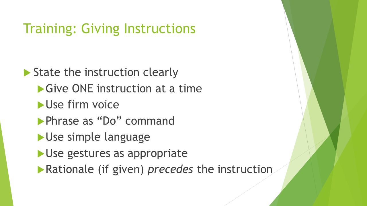 Training: Giving Instructions State the instruction clearly Give ONE instruction at a time Use firm voice Phrase as Do command Use simple language Use