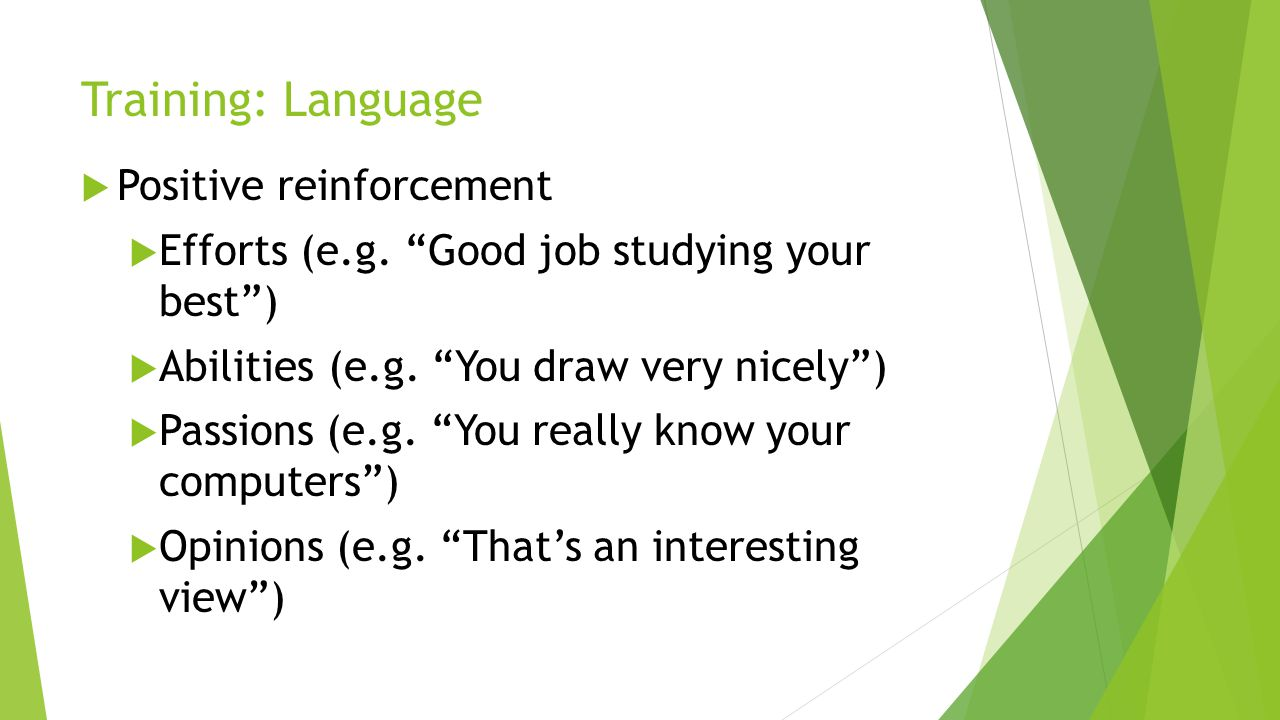 Training: Language Positive reinforcement Efforts (e.g. Good job studying your best) Abilities (e.g. You draw very nicely) Passions (e.g. You really k