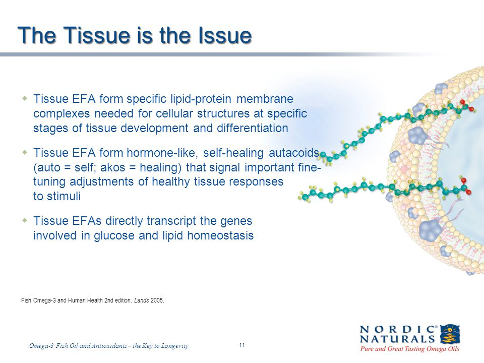 Temp-A.ppt 6/4/2014 11 11 Omega-3 Fish Oil and Antioxidants – the Key to Longevity The Tissue is the Issue Tissue EFA form specific lipid-protein membrane complexes needed for cellular structures at specific stages of tissue development and differentiation Tissue EFA form hormone-like, self-healing autacoids (auto = self; akos = healing) that signal important fine- tuning adjustments of healthy tissue responses to stimuli Tissue EFAs directly transcript the genes involved in glucose and lipid homeostasis Fish Omega-3 and Human Health 2nd edition.