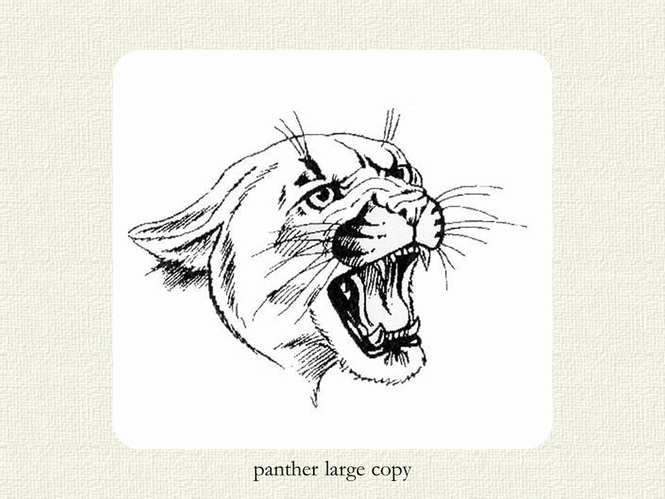 panther large copy