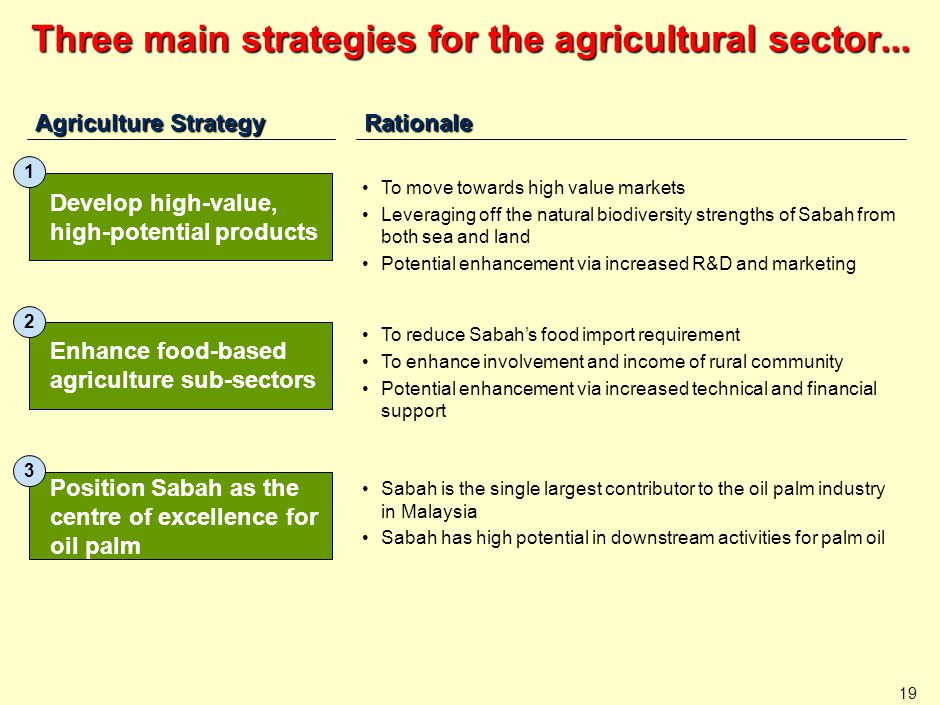 19 Three main strategies for the agricultural sector... Agriculture Strategy Enhance food-based agriculture sub-sectors 2 Rationale Position Sabah as