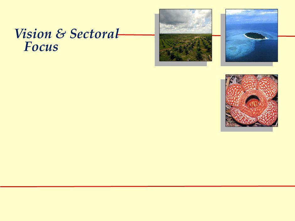 Vision & Sectoral Focus