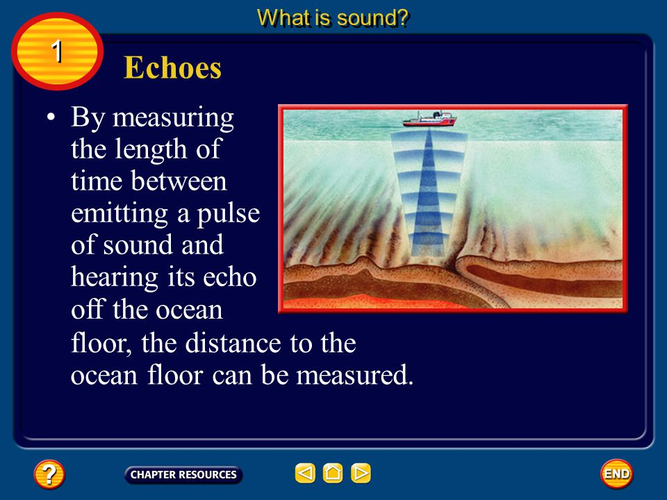 Echoes What is sound? 1 1 Sonar systems used sound waves to map objects underwater.