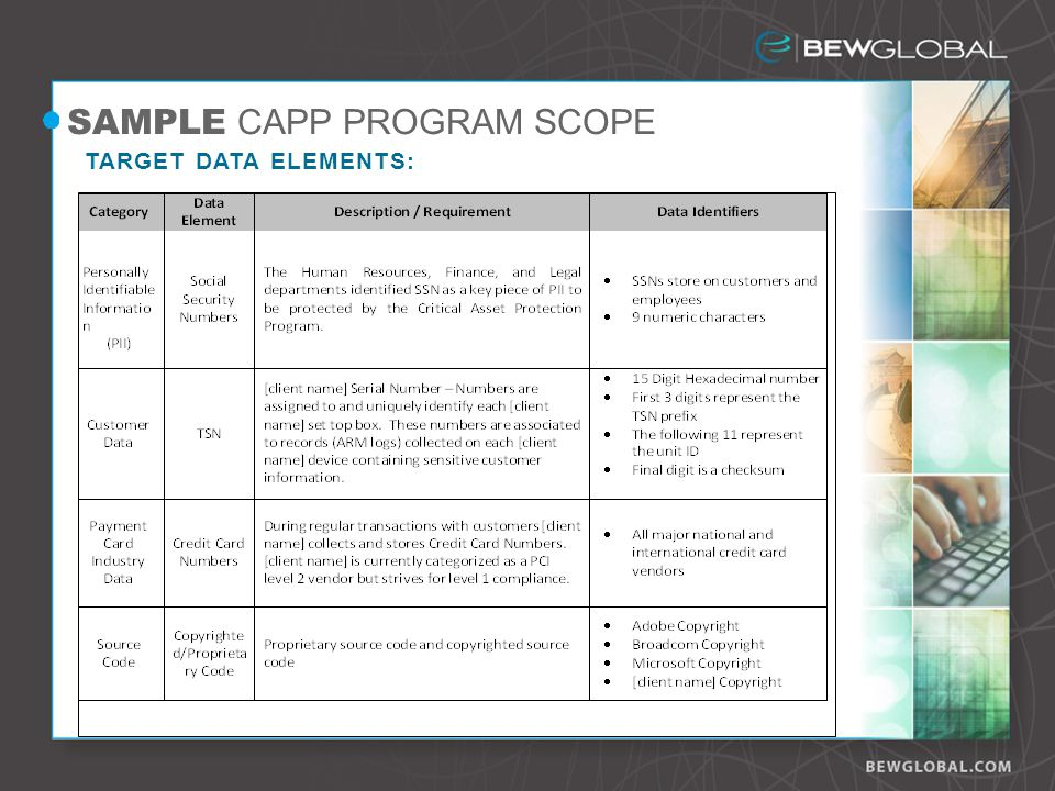 SAMPLE CAPP PROGRAM SCOPE TARGET DATA ELEMENTS: