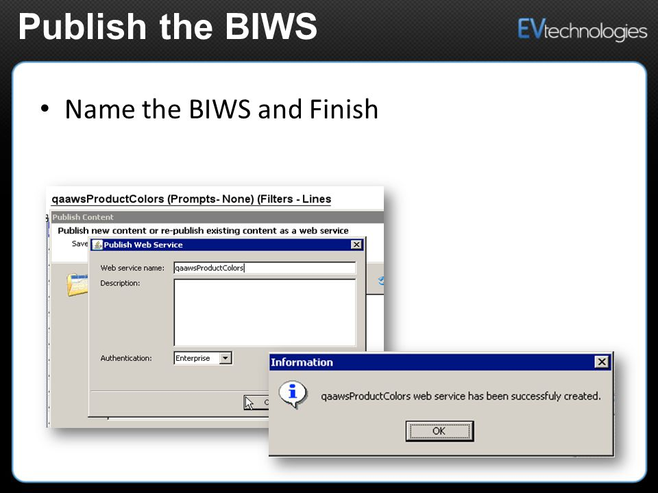 Name the BIWS and Finish Publish the BIWS
