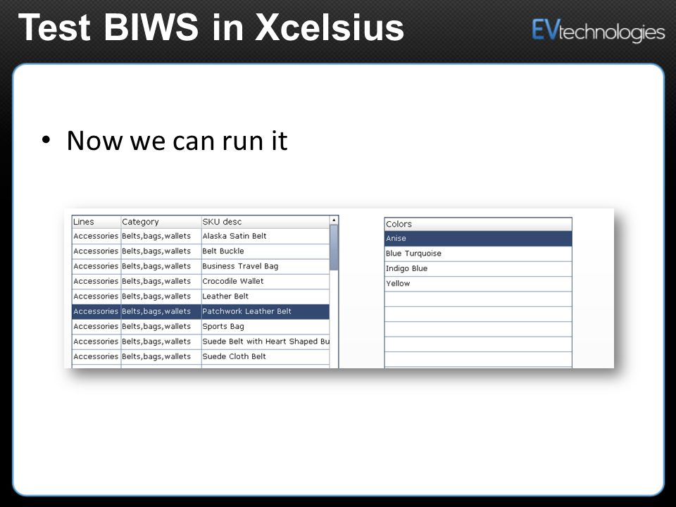 Now we can run it Test BIWS in Xcelsius