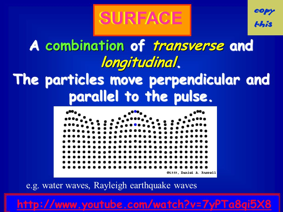 Longitudinal Waves The particles do not move down the tube with the wave; they simply oscillate back and forth about their individual equilibrium posi
