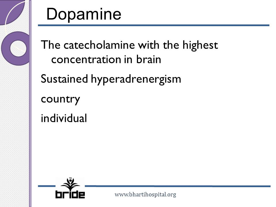 www.bhartihospital.org Dopamine The catecholamine with the highest concentration in brain Sustained hyperadrenergism country individual