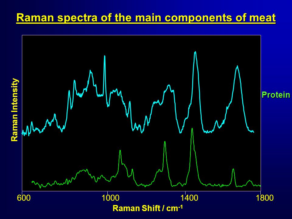 Raman spectra of the main components of meat Raman Shift / cm -1 Raman Intensity 600600 Protein 100014001800
