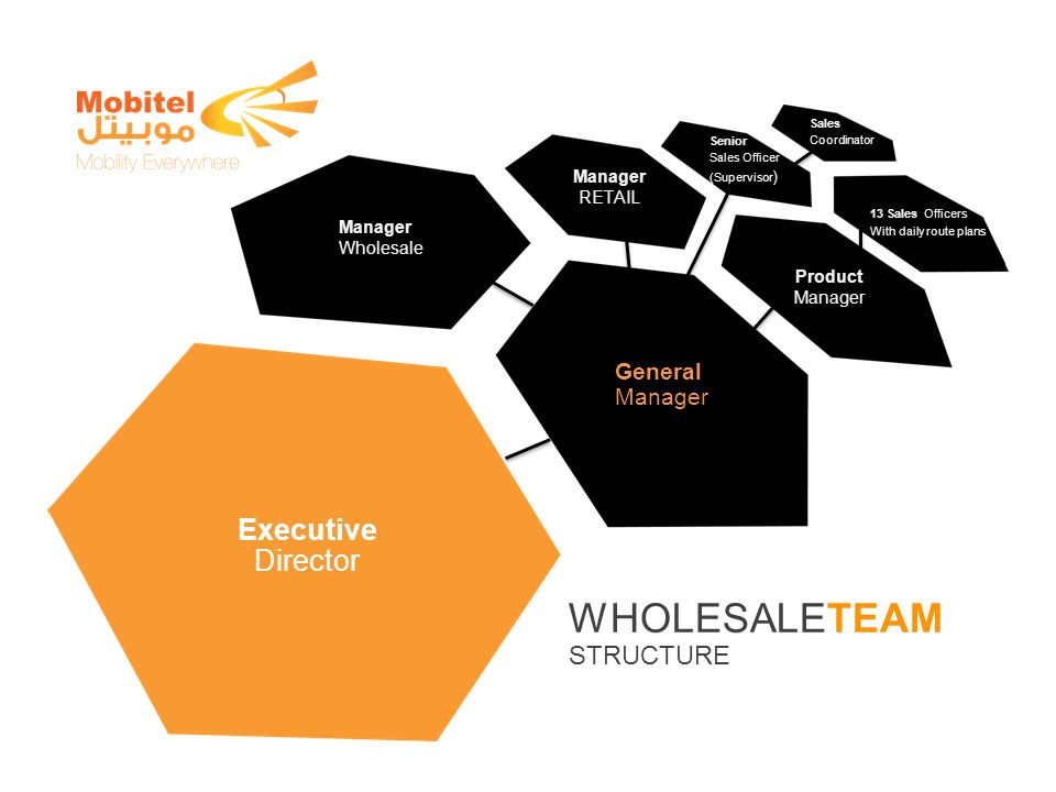 WHOLESALETEAM STRUCTURE Executive Director General Manager Product Manager RETAIL Manager Wholesale Senior Sales Officer (Supervisor ) Sales Coordinat