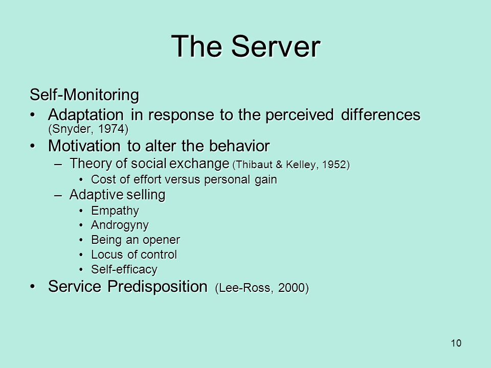 The Server Self-Monitoring Adaptation in response to the perceived differences (Snyder, 1974)Adaptation in response to the perceived differences (Snyd