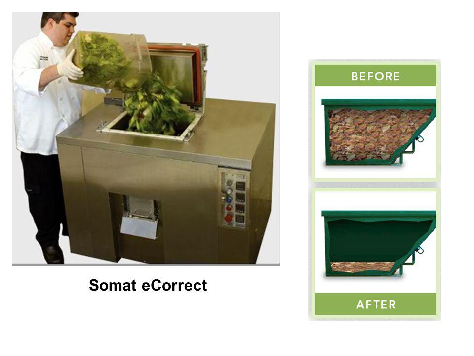 Somat eCorrect