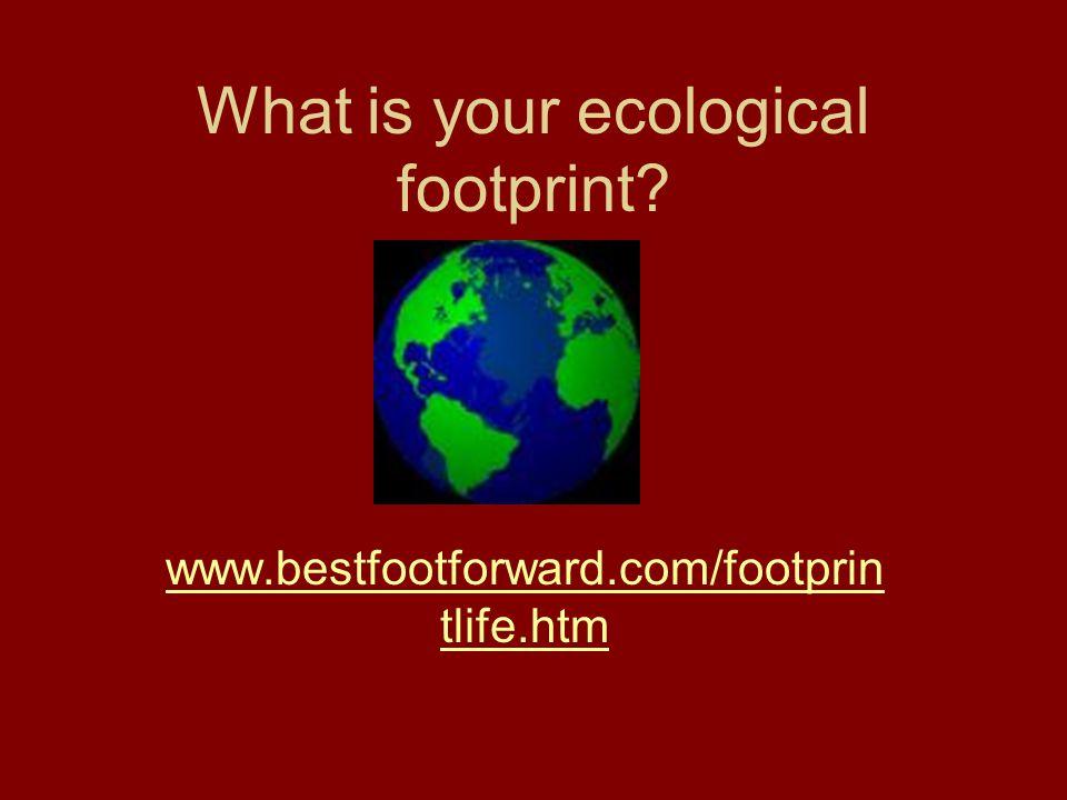 What is your ecological footprint? www.bestfootforward.com/footprin tlife.htm