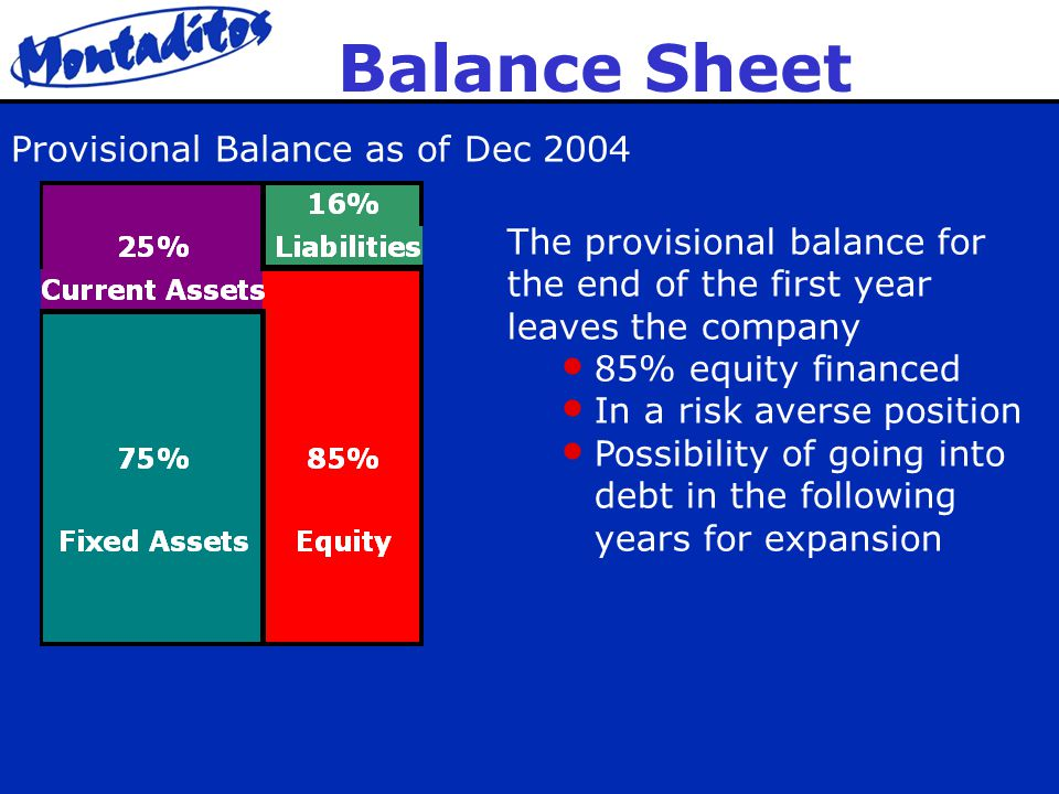 Balance Sheet The provisional balance for the end of the first year leaves the company 85% equity financed In a risk averse position Possibility of going into debt in the following years for expansion Provisional Balance as of Dec 2004