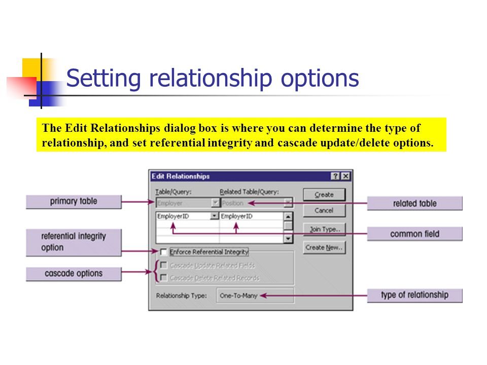 Setting relationship options The Edit Relationships dialog box is where you can determine the type of relationship, and set referential integrity and cascade update/delete options.