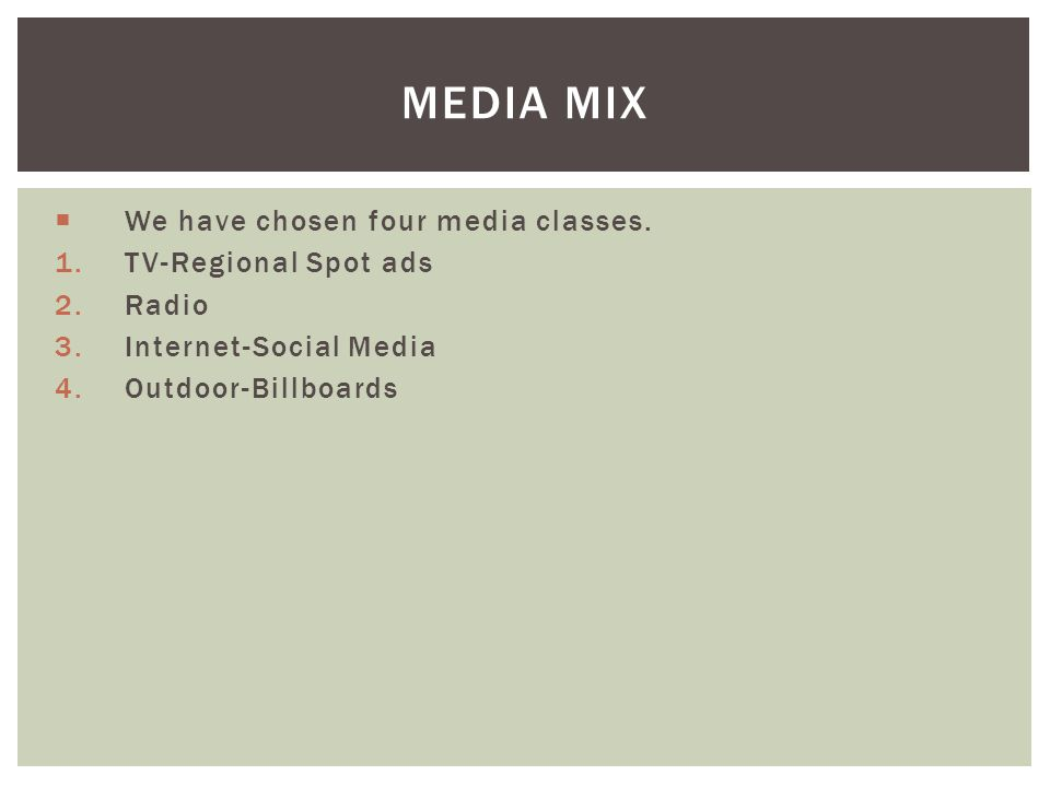 MEDIA MIX We have chosen four media classes. 1.TV-Regional Spot ads 2.Radio 3.Internet-Social Media 4.Outdoor-Billboards