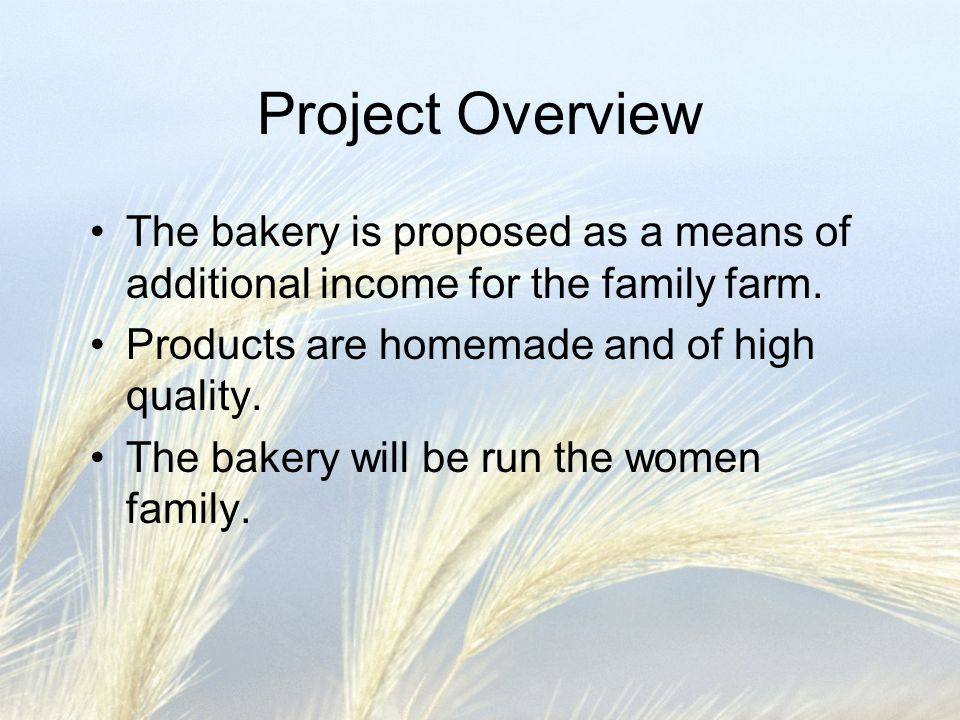 Project Overview The bakery is proposed as a means of additional income for the family farm. Products are homemade and of high quality. The bakery wil