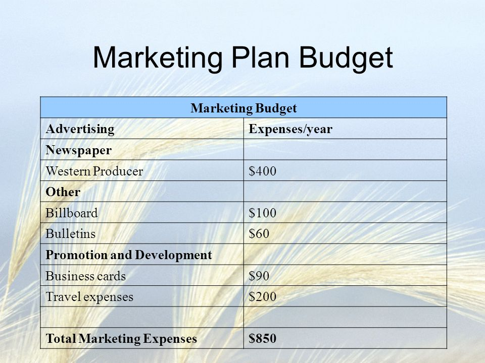 Marketing Plan Budget Marketing Budget AdvertisingExpenses/year Newspaper Western Producer$400 Other Billboard$100 Bulletins$60 Promotion and Development Business cards$90 Travel expenses$200 Total Marketing Expenses$850
