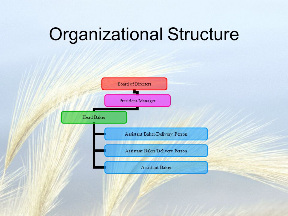 Organizational Structure Board of Directors President/Manager Head Baker Assistant Baker/Delivery Person Assistant Baker