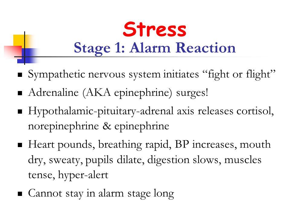 Stress Stage 1: Alarm Reaction Sympathetic nervous system initiates fight or flight Adrenaline (AKA epinephrine) surges.