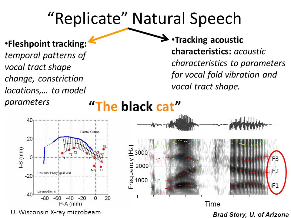 Replicate Natural Speech Fleshpoint tracking: temporal patterns of vocal tract shape change, constriction locations,… to model parameters Tracking acoustic characteristics: acoustic characteristics to parameters for vocal fold vibration and vocal tract shape.