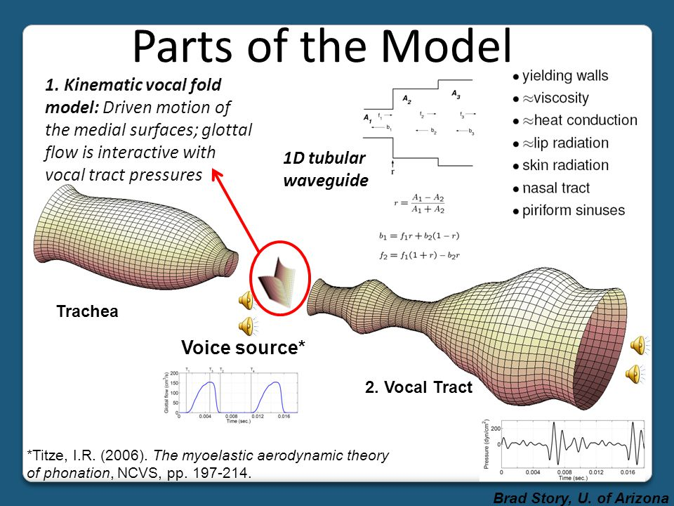 Replicate Natural Speech Fleshpoint tracking: temporal patterns of vocal tract shape change, constriction locations,… to model parameters Tracking aco
