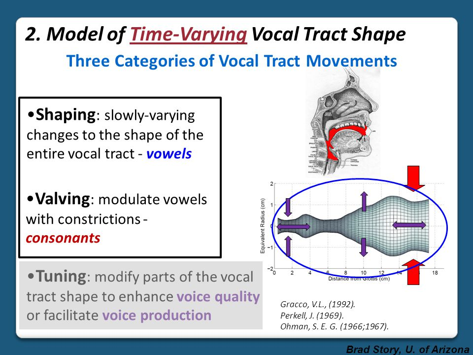 Shaping + Valving = composite time-varying vocal tract shape Time-varying formant frequencies F3 F2 F1 The black cat vowel transitions only vowel transitions + consonant perturbations Brad Story, U.