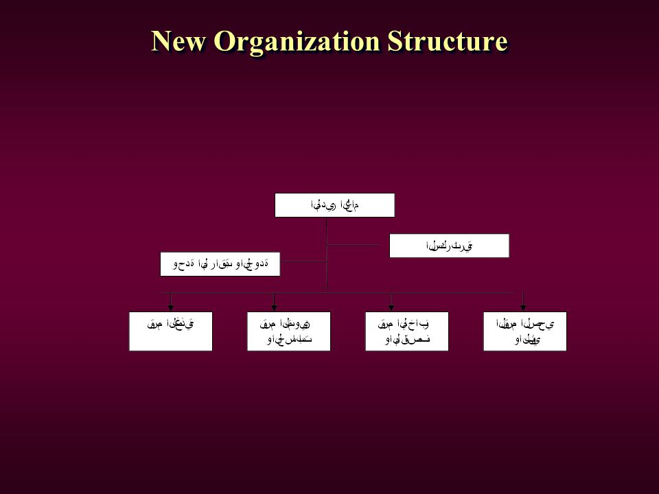 New Organization Structure
