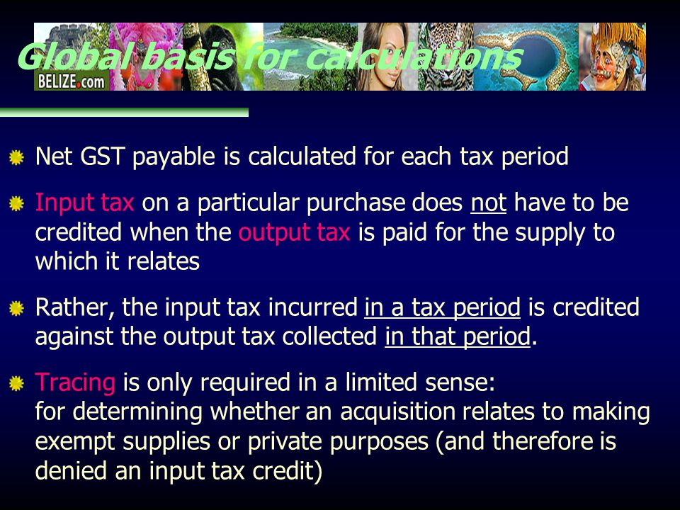 Global basis for calculations Net GST payable is calculated for each tax period Input tax on a particular purchase does not have to be credited when t