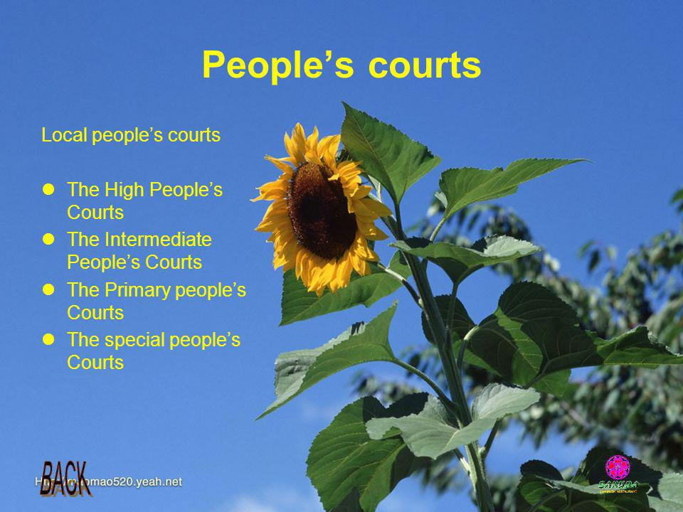 Peoples courts Local peoples courts The High Peoples Courts The Intermediate Peoples Courts The Primary peoples Courts The special peoples Courts