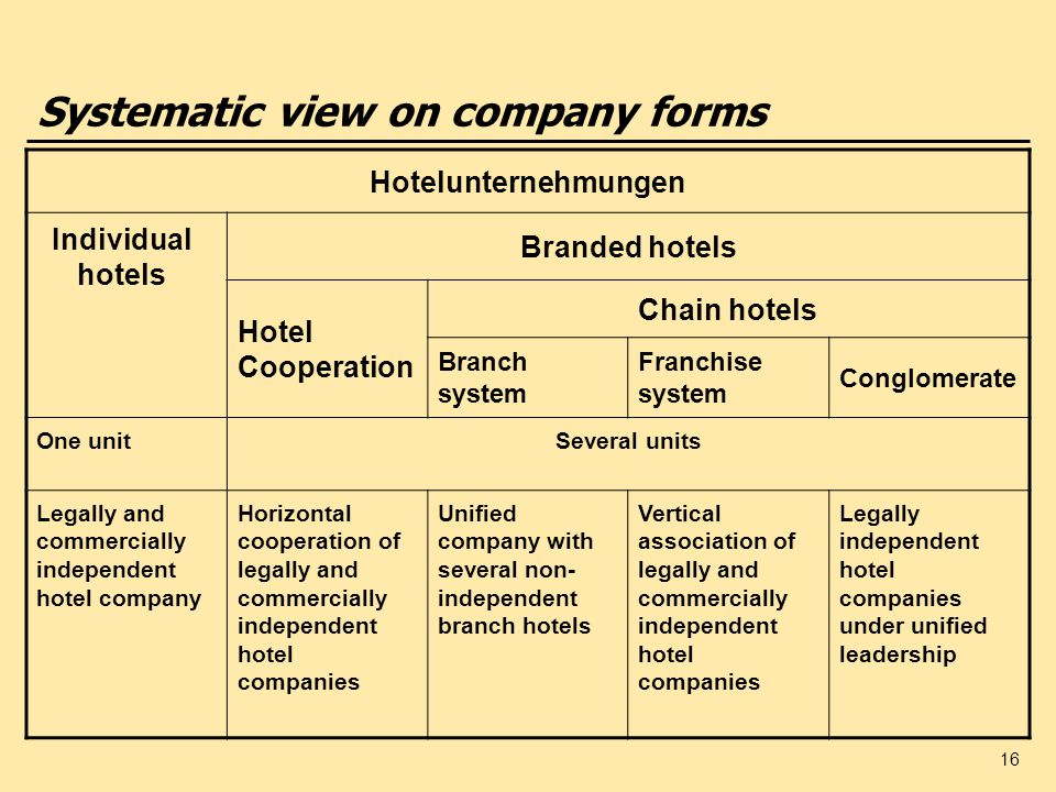 16 Systematic view on company forms Hotelunternehmungen Individual hotels Branded hotels Hotel Cooperation Chain hotels Branch system Franchise system