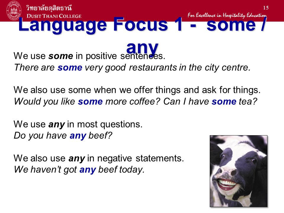 15 Language Focus 1 - some / any We use some in positive sentences. There are some very good restaurants in the city centre. We also use some when we