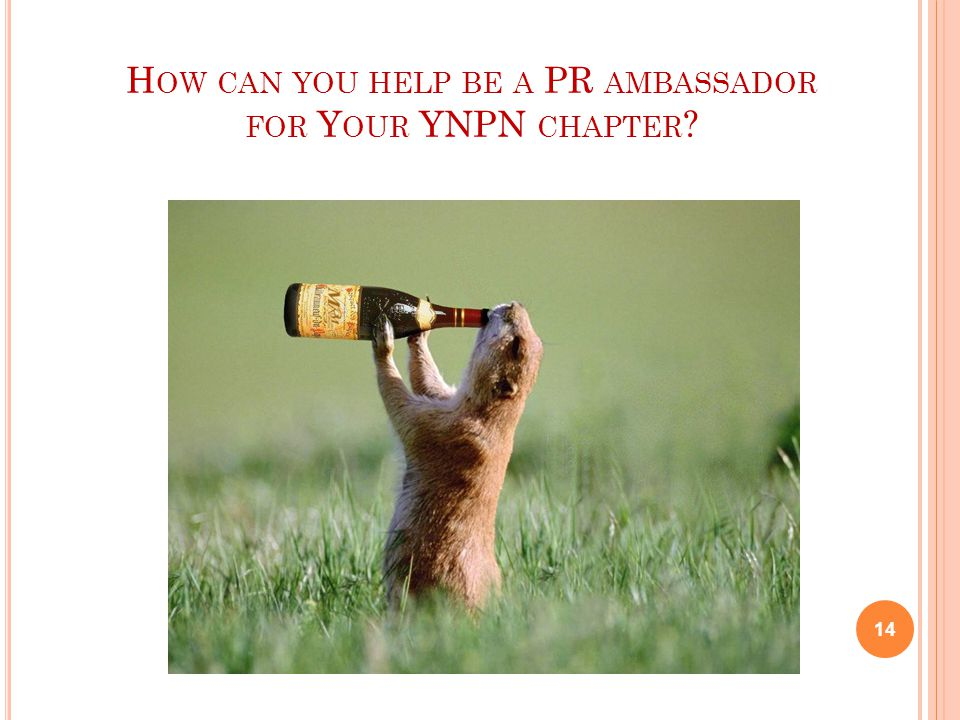 H OW CAN YOU HELP BE A PR AMBASSADOR FOR Y OUR YNPN CHAPTER ? 14